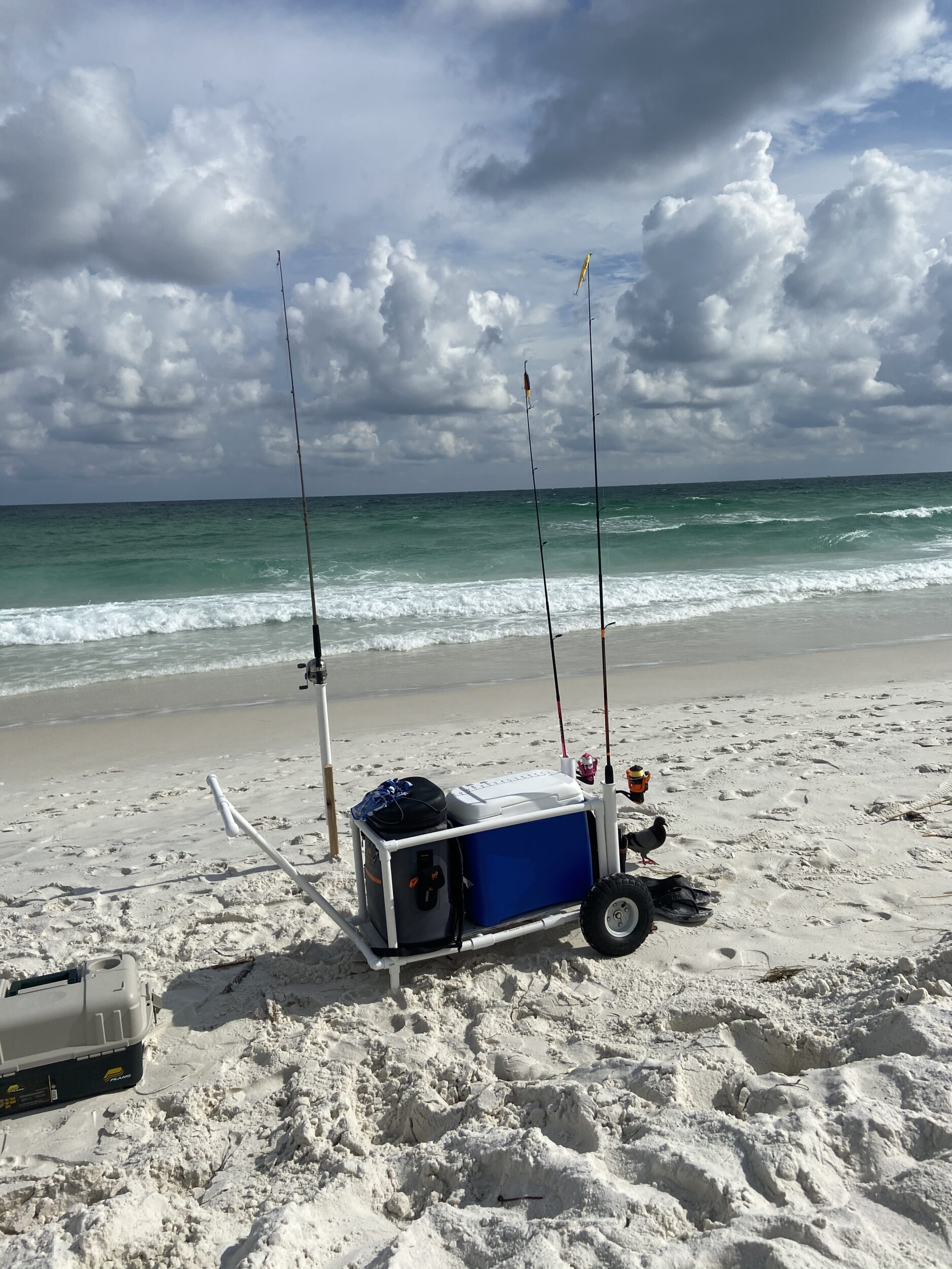Introduction To Surf Fishing!